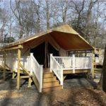 Holly Shores Safari Tent