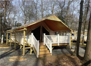 Holly Shores Safari Tent